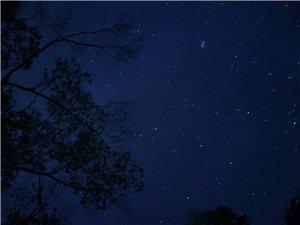 夜晚的星空真的很好看。(手机拍摄)