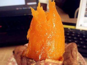 沐浴村沙土地種植煙薯25,西瓜紅蜜薯大量上市。