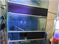 低价处理鱼缸4个一组