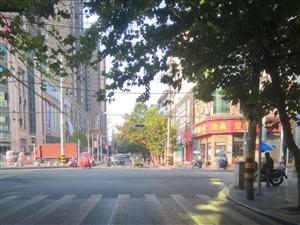 解放路往接龙桥方向,老烟厂红绿灯路口的红绿灯完全被树枝挡住了,根本就看不到