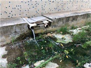 财源小区污水横流