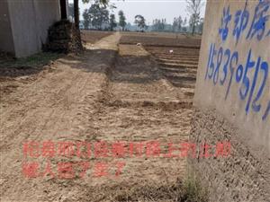 杞县邢口岳寨村路上的土都被人挖了卖钱了