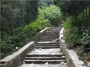 一条通往圣泉寺的路毁了我的美好期望