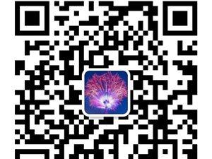 平武县新益家电维修部形象图