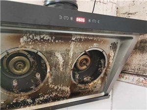 清洗家電 除螨蟲 除甲醛