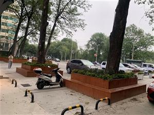 公园里为什么可以停车?谁给了他们权利?