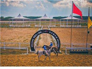 琼海市博鳌巨人马场