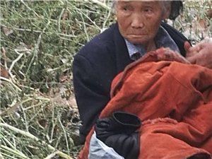 可伶!潢川弋阳广场一位80多岁老人投河,有认识的帮忙找到家人...