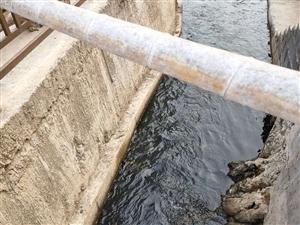 �r光不�停�清澈的河水什么�r候能有呢?