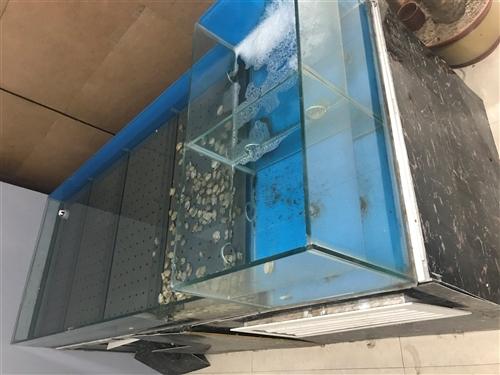 两米长海鲜缸带制冷