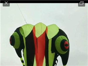 岱湖放飞巨型软体三叶虫外挂中国五星红旗