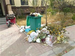 塞戈维亚小区垃圾成堆。小区无人管理