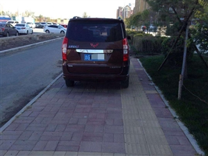这车停的没谁了!