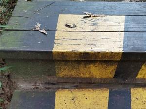 永春留安山木栈梯道存在安全隐患