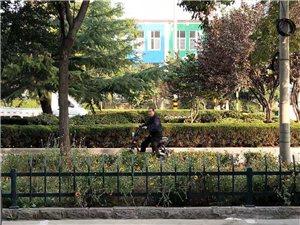 沂蒙中学附近出入一暴漏生殖器的男子