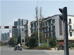 严重的交通安全隐患,在三条龙的红绿灯处,金水大道往火车站直行方向