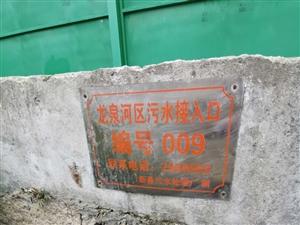 龙泉桥小河污染严重,污水横流,臭气熏天
