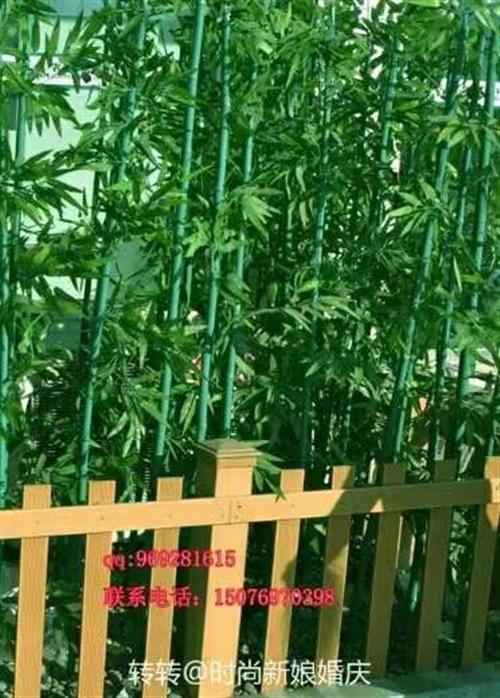 出售竹子3元一根,有意者请联系李女士,电话15184248057