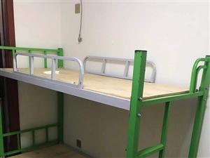 因午托班转让,9月份买的上下铺。 绿色儿童床,0.8*1.8      6张 灰色成人床,0.9...