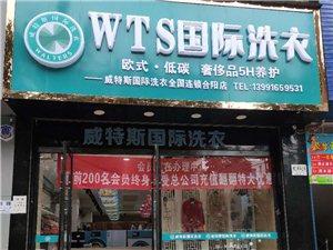 合陽金水路《WTS國際洗衣店》