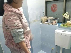 天成国际花半里又一住家遭厕所反水
