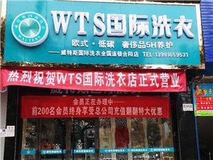 WTS國際干洗店