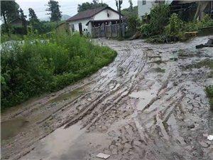 隆昌圣�舳�郎村村的泥巴�R路,下雨天不能走,十多年了�]人管�]人��的