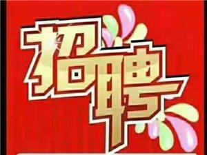 招聘�⑹拢汉攴��V�鲂率兰o百�3��