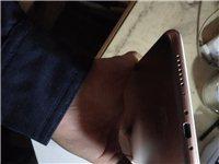 小米(MI)小米平板4 8英寸平板电脑LTE版 骁龙660处理器  4G内存+64G存储 FHD 金...