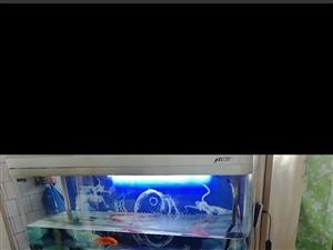 二手魚缸,600元低價處理,燈光,洋氣泵都是專業人員匹配,聯系電話15849037078上門自取