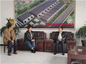 县委县政府领导到临泉脱水蔬菜产业基地走访调研为企业排忧解难