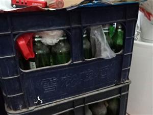 一套雪花原汁麦啤酒箱  一套哈啤啤酒箱