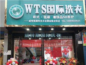 合陽WTS國際洗衣干洗店