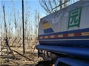 园林洒水车出售
