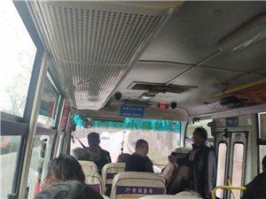 新民彬县公交不守法