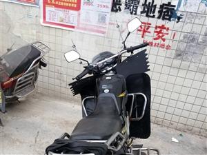 本人有一�v本田二�摩托�出售,��r好,�C件�R,有意者�系��13982687217