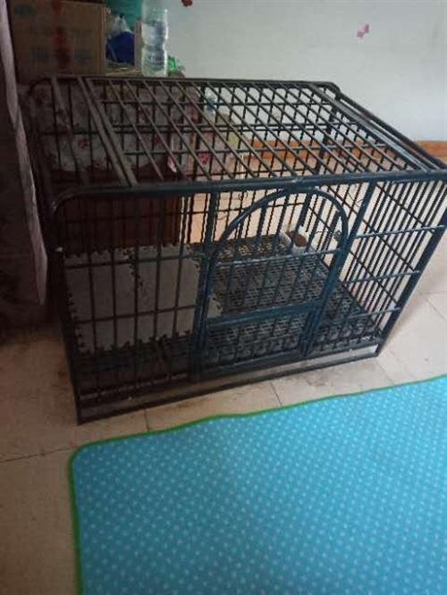 出售一个狗笼子,125*80*95。没用多久,