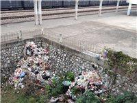 火车站附近垃圾成堆