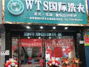 合陽縣金水路WTS國際洗衣店