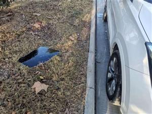 丽阳豪苑南门附近多辆汽车车窗被砸。