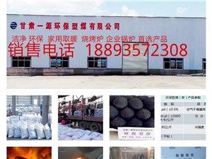环保洁净型煤