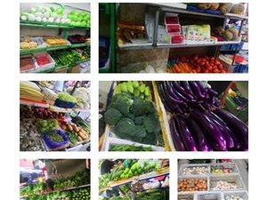 安溪全城配送蔬菜