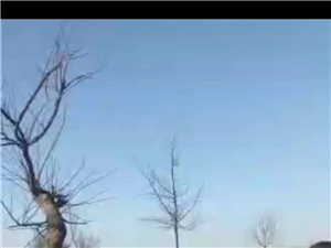 关于彬州市新民镇黄三村村民被打事件