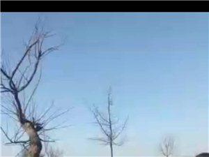 �P于彬州市新民��S三村村民被打事件