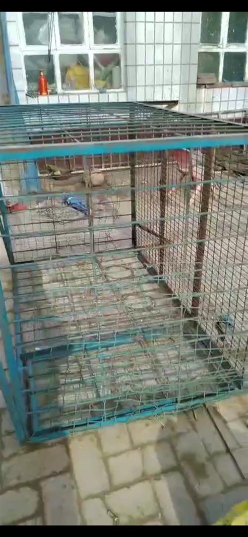 长1.5米,宽1米,带腿的狗笼子
