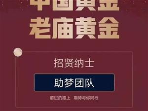 中���S金�Yu招聘