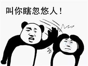 �R河黑�R牡丹�A府�@�F特�物�I收�M���1.1元/月/平方米!!!!