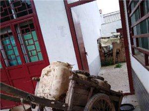 彬县香庙综合市场的公厕没有彻底解决问题?