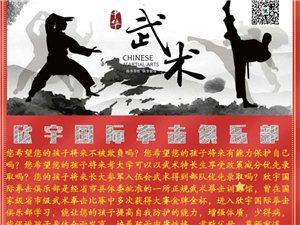 传播中华武术文化