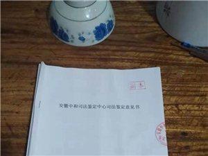 我是安徽省六安市霍邱�h岔路�村民,我的����家琴,���c��,�o人��津